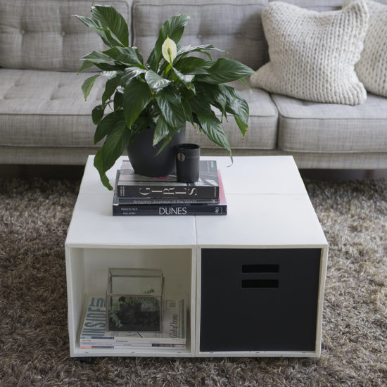 Coffee Table | White 4 Cube Kit and Black Crate